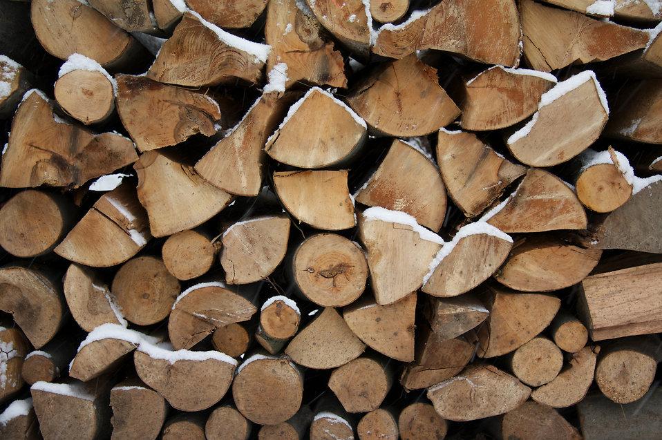 choosing firewood